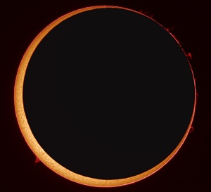 Annular Solar Eclipse at High Resolution Credit & Copyright: Stefan Seip, via NASA (click image for more information)
